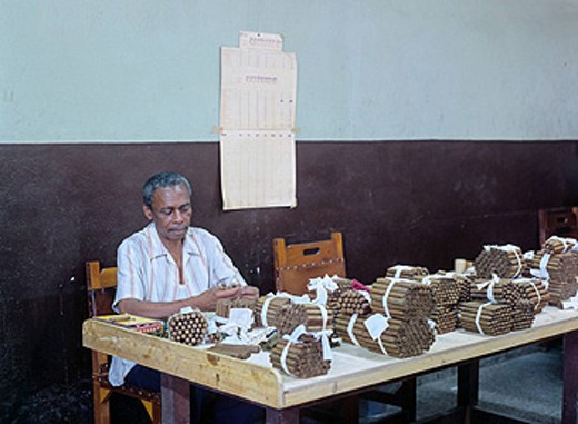Cuba, Habana city, Partagas cigar factory, quality control, worker, cigar factory, America, Caribbean, tobacco, cigar, : Stock Photo
