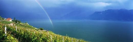 sombre, gloomy, lake Geneva, thunderstorm, mood, Lac Leman, Lake Geneva, scenery, Lavaux, panorama, vineyard, rainbo : Stock Photo