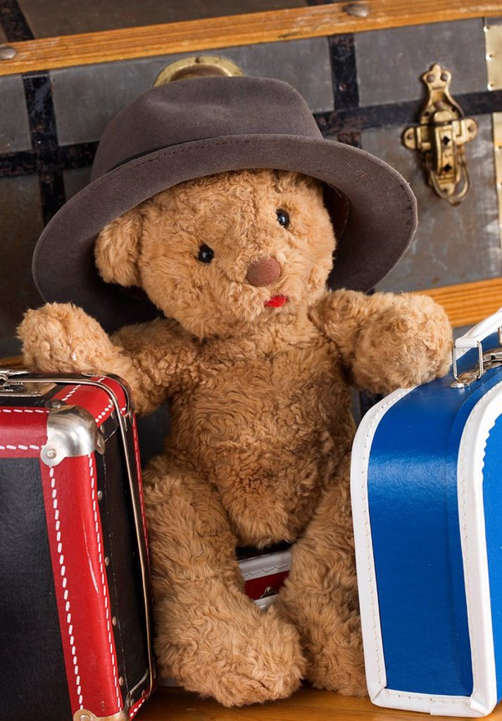 Stock Photo: 1597-58497 Genre, Bag, Bear, Cuddly, Concept, Object, Soft, Suitcase, Teddy, Teddy bear, Teddies, Toy, Toys, Travel, Traveling