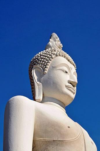 Buddhastatue, Great Chedi Chaya Mongkol, Wat Yai Chai Mongkon, Ayutthaya, Thailand, Asien : Stock Photo