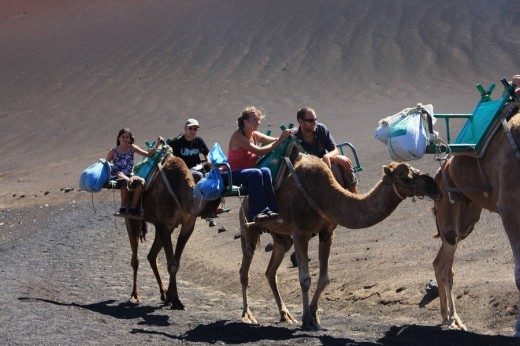 Stock Photo: 1597-62430 Lanzarote island, Spain, Europe, Canary islands, travel, volcanism, volcanic Landscape, scenery, Timanfaya, national p