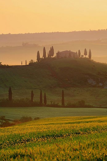 Italy, Europe, Tuscany, Toscana, hills, hill, scenery, landscape, nature, landscape, fields, cypresses, traditional, c : Stock Photo