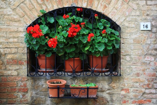 Window, traditional, stone house, Val d´Orcia, Italy, Europe, Tuscany, Toscana, flowers, flowerpots, flowering plants, : Stock Photo
