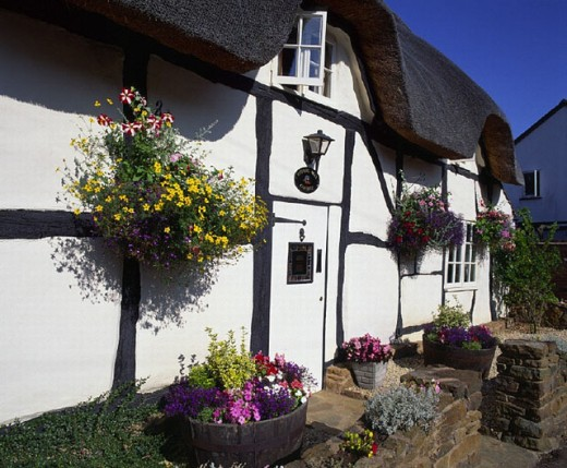 old country house, flowers, England, Great Britain, Europe, house, home, reed roof, straw roof, Thatched cottage, tr : Stock Photo