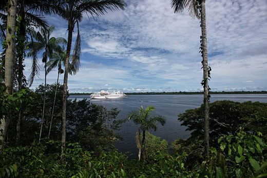MS Hanseatic, Brazil, Amazon rainforest, : Stock Photo