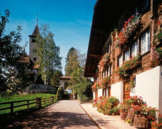 Stock Photo: 1597-8159  farmhouse, Bernese Oberland, flower window, Brienz, chalet, geraniums, timber house, canton Bern, reformed church, S