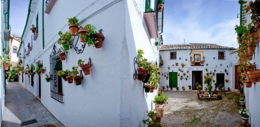 Stock Photo: 1597-87378 Andalusia, Spain, Priego de Cordoba, lane, flowers, white, travel, tourism, vacation, holidays