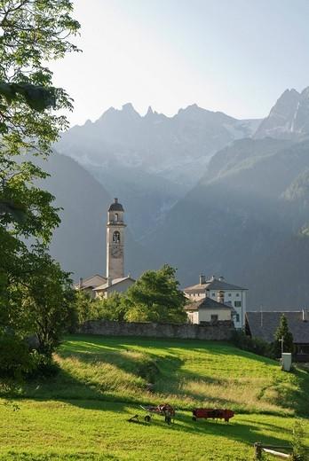 Stock Photo: 1597-93120 Das Bergdorf Soglio im Bergell im Morgenlicht und von links nach rechts die Gipfel Sciora Dafora, Ago di Sciora, Sciora Dadent, Sciora_Gruppe, sowie Pizzi Gemelli, von der Bondasca_Gruppe,