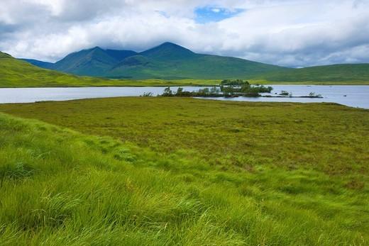 Rannoch moor, Great Britain, Scotland, Europe, sea, moor, trees, grass, clouds : Stock Photo