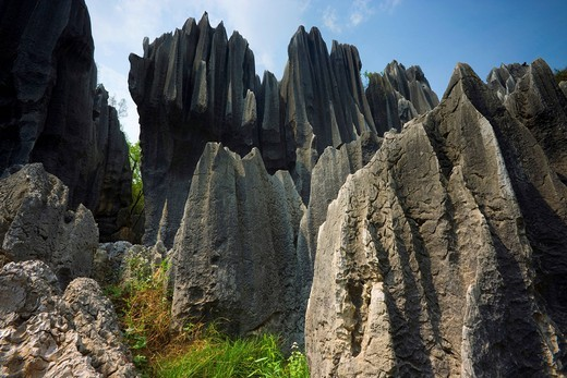 Shilin Stone Forest, China, Asia, stone wood, cliff forms, cliff needles, erosion, karst, formations : Stock Photo