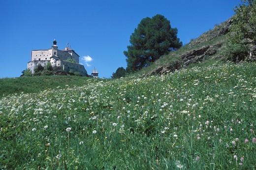 Stock Photo: 1597-94993 Castle, hill, Europe, Graubünden, Grisons, Tarasp_Fontana, meadow, summer, scenery,