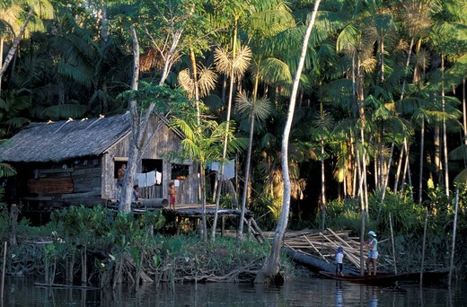 Home, hut, Amazon River, Ilha do Marajo, Amazon Delta, Amazonia, Brazil, South America, : Stock Photo