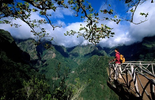 Portugal, Europa, Europe, Madeira, hiking, Ribeiro Frio, Europe, island, Atlantic Ocean, mountain, mountains, landscap : Stock Photo