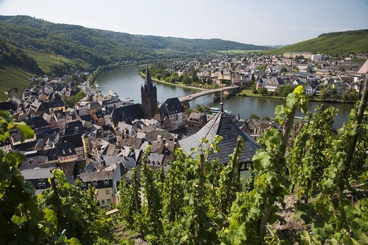Germany, Europe, Rhineland_Palatinate, Bernkastel_Kues, town, Bernkastel_Kues, German wine, Wine region, Mosel wine, M : Stock Photo