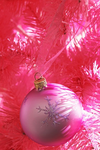 pink bauble in pink tree : Stock Photo
