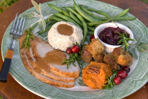 Holiday Roast Turkey Dinner : Stock Photo