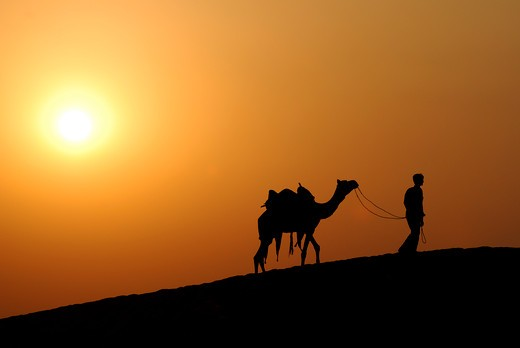 The Thar Desert, also known as the Great Indian Desert, is a large, arid region in the northwestern part of the Indian subcontinent. : Stock Photo