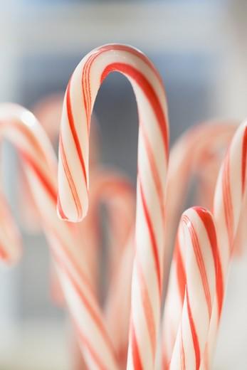 Stock Photo: 1598R-10009626 Candycanes