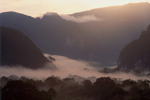 The rising sun gradually burns off the swirling mist  that cloaks Mulu National Parks mountains & caves : Stock Photo