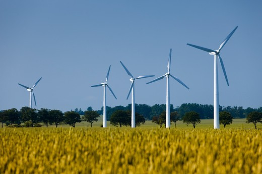 Stock Photo: 1598R-10013529 Wind turbines