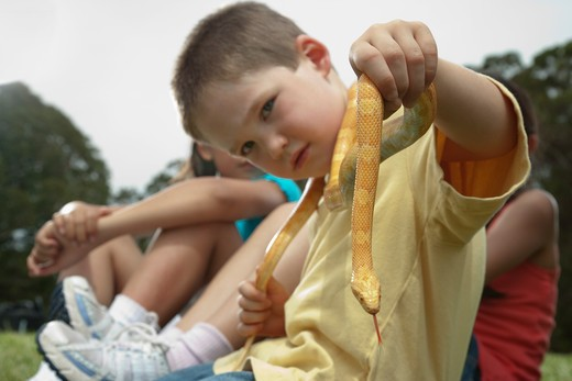 boy in yellow shirt holding a small snake : Stock Photo