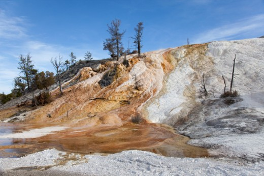 Palette Spring - Mammoth Hot Springs - Yellowstone National Park - WYoming : Stock Photo