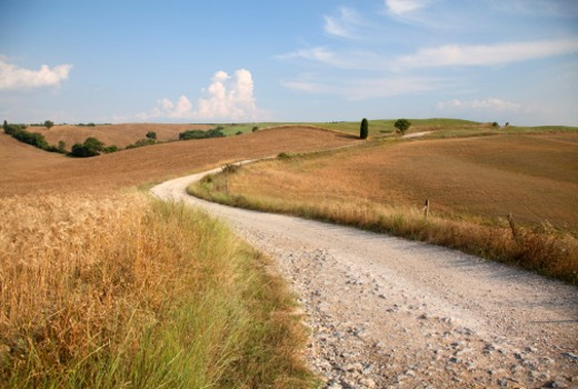 Stock Photo: 1598R-10017120 Winding road through Tuscan countryside
