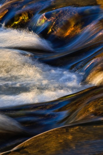 Swiftcurrent Creek, Glacier National Park : Stock Photo
