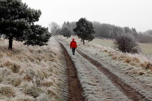 Walker on a frost covered track in the Harwardian Hills in North Yorkshire in January. : Stock Photo