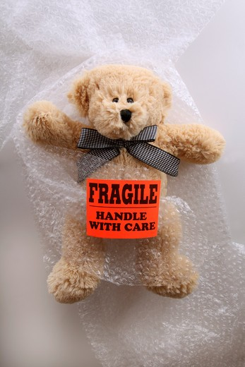 Teddybear Protected by Bubble Wrap : Stock Photo