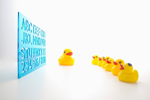 Toy ducks and A to Z board. : Stock Photo