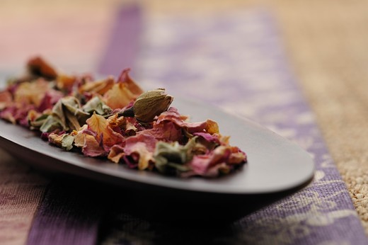 Stock Photo: 1598R-10032207 Rosebuds&petalpink herb