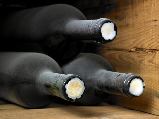 Stock Photo: 1598R-10032850 Wine bottles in a wine cellar, which are covered with dust as they have been in storage for a long time. The frame of the photograph is horizontal and the shot is in perspective.