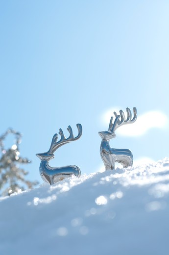 Blue sky, Christmas tree, Couple : Stock Photo