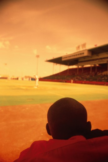 Spectator in Baseball Stadium : Stock Photo