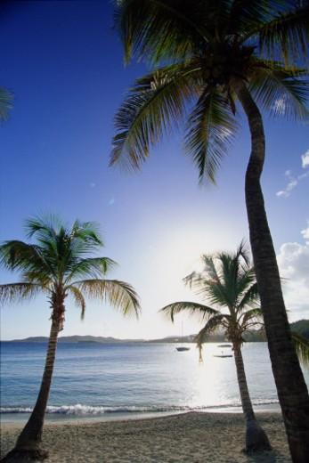Stock Photo: 1598R-10059945 United States Virgin Islands, Saint Thomas, Secret Harbour