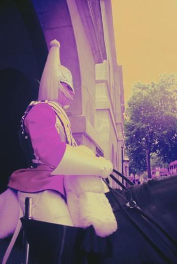 England, London, Horse Guard, profile (gel effect) : Stock Photo