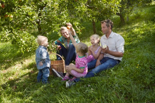 Family sitting in garden : Stock Photo