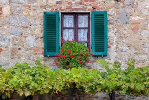 Flower box on window : Stock Photo