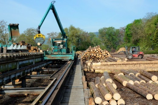 Stock Photo: 1598R-10077435 timber yard at saw mill