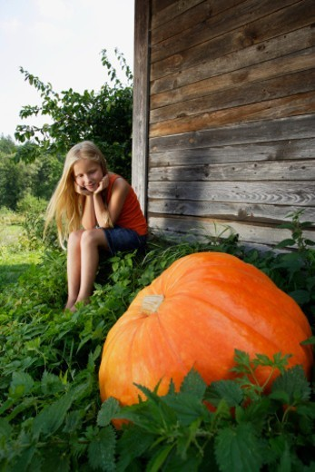 girl sitting by a growing pumpkin : Stock Photo