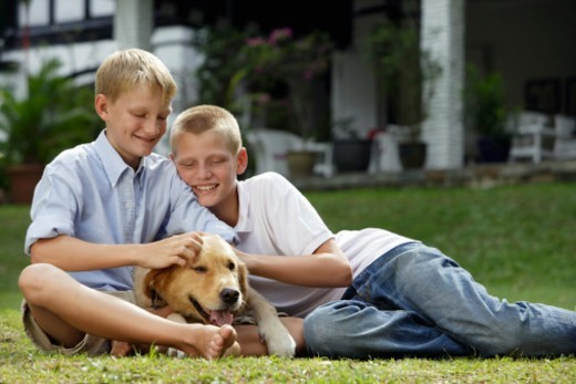 Stock Photo: 1598R-10079707 two boys with dog
