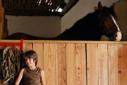 Stock Photo: 1598R-10079749 boy in stable next to horse
