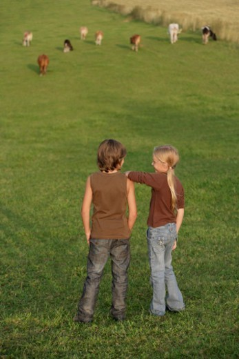 Stock Photo: 1598R-10080280 kids watching the cows
