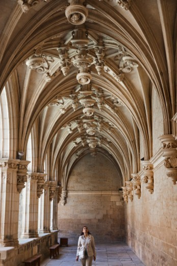 Cloister gothic Renaissance. Saint Zoilo Monastery. Carrion de los Condes. Palencia. Castilla y Leon. Spain.Camino de Santiago. (The way of St. James). : Stock Photo