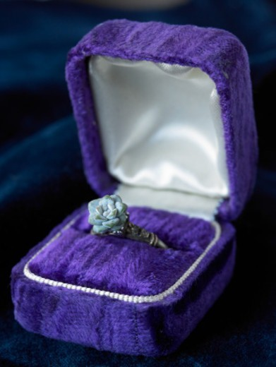 Stock Photo: 1598R-10086118 Flower Ring in Purple Box