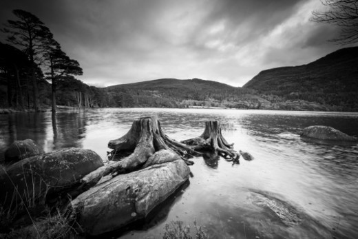 B&W image of a cloudy day in Killarney National Park, County Kerry, Ireland. : Stock Photo