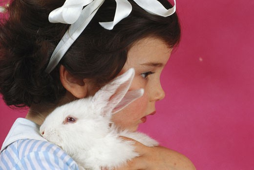 Girl (2-4) holding rabbit, side view, close-up : Stock Photo
