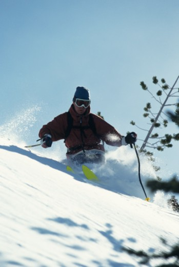 Skier with snow spray, low angle view : Stock Photo