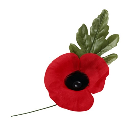 Veterans Memorial Poppy : Stock Photo